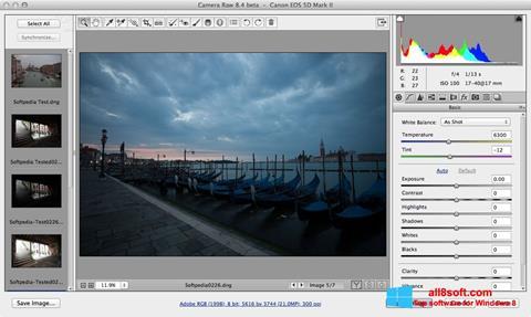স্ক্রিনশট Adobe Camera Raw Windows 8