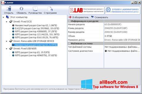 স্ক্রিনশট R.saver Windows 8