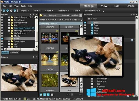 স্ক্রিনশট ACDSee Photo Manager Windows 8