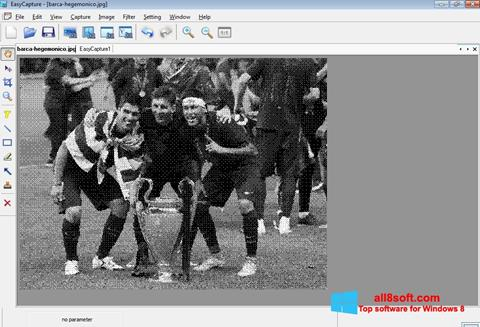 স্ক্রিনশট EasyCapture Windows 8
