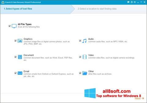 স্ক্রিনশট EaseUS Data Recovery Wizard Windows 8