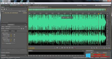 স্ক্রিনশট Adobe Audition Windows 8