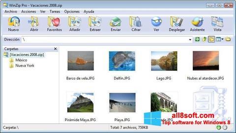 স্ক্রিনশট WinZip Windows 8