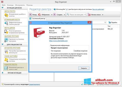 স্ক্রিনশট Reg Organizer Windows 8