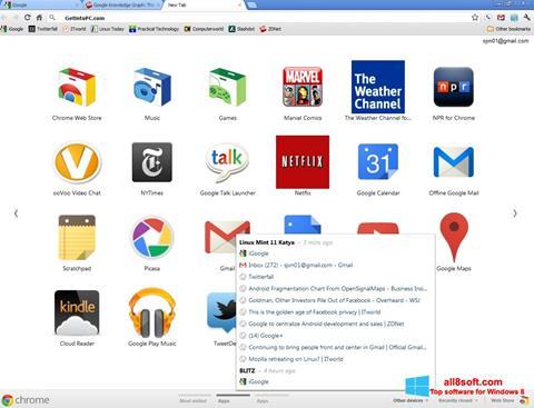 স্ক্রিনশট Google Chrome Offline Installer Windows 8