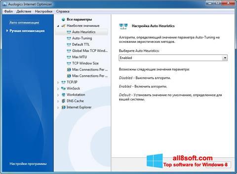 স্ক্রিনশট Auslogics Internet Optimizer Windows 8