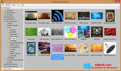 স্ক্রিনশট IrfanView Windows 8