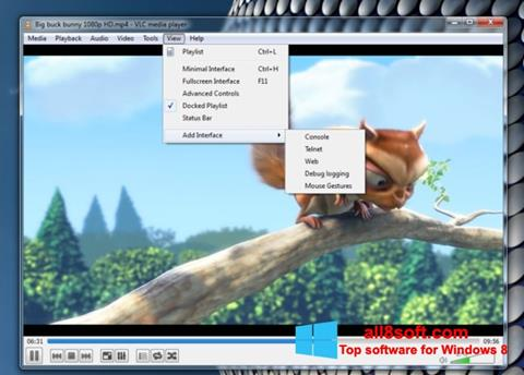 স্ক্রিনশট VLC Media Player Windows 8